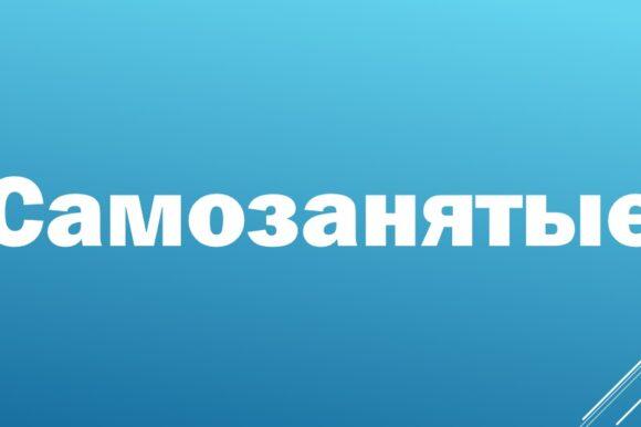 Нижегородское региональное отделение «ОПОРЫ РОССИИ» вышло с инициативой о реализации проекта по самозанятым в регионе